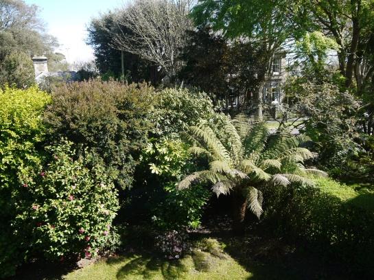 Lush garden at Venton Vean
